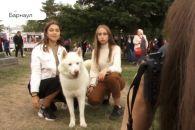 День города с «Жилфондом»: праздничный видеосюжет